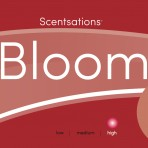 Scentsations - BLOOM (Cherry)